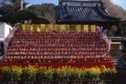 勝浦のひな祭り