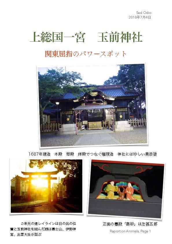 上総一ノ宮 玉前神社 フォトコラム 写真